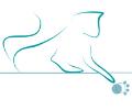 A passo di gatto